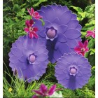 Zeal Reflecting Nature Petal Seal Lid - Purple