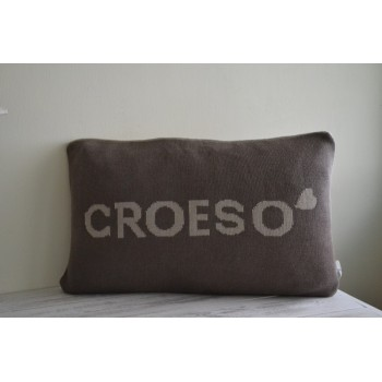 Croeso Beige & Brown Cushion
